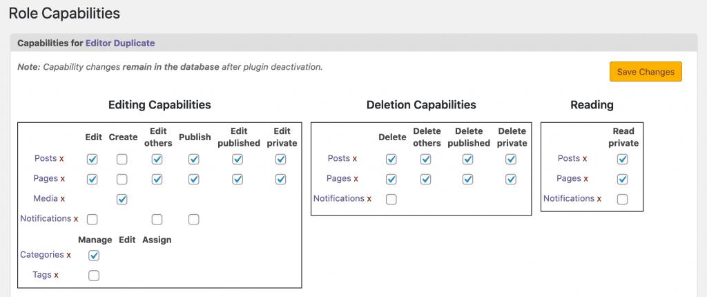 Editor Duplicate