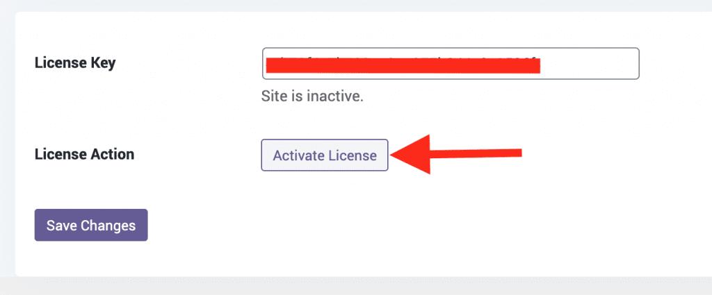 License key for the PublishPress Theme