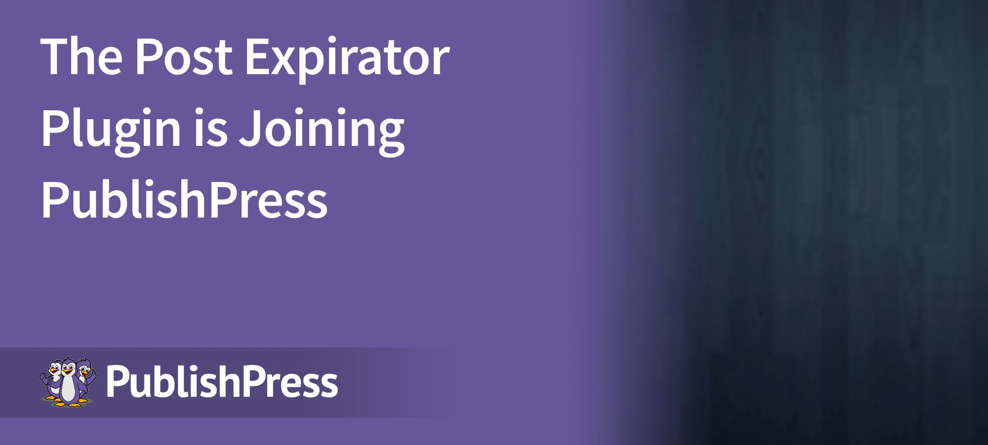 Post Expirator Header